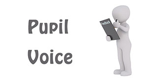 Go  the 'Pupil Voice' page